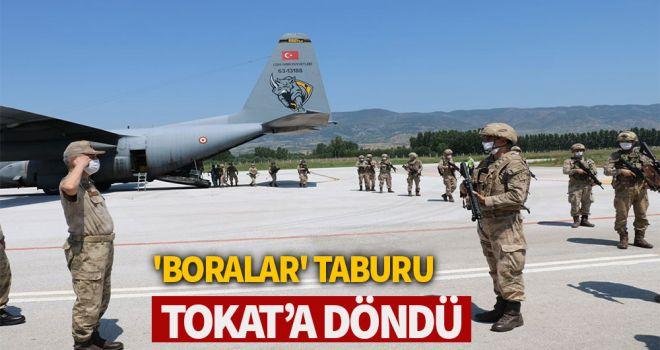 'Boralar' taburu, Tokat'a döndü