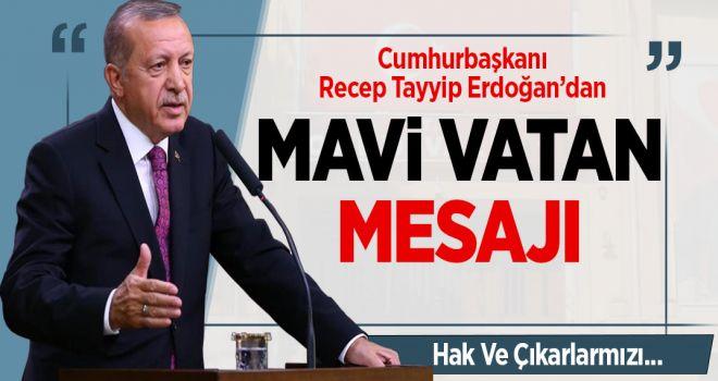 Cumhurbaşkanı Recep Tayyip Erdoğan'dan 'Mavi Vatan' mesajı