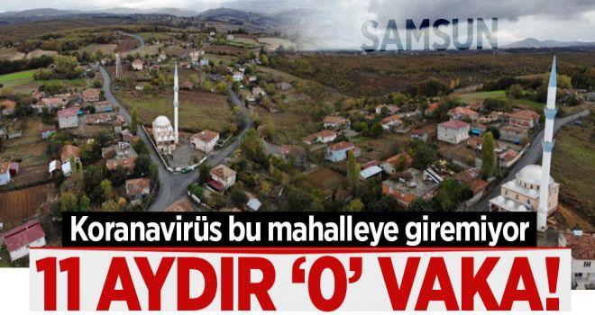 11 AYDIR '0 KORANAVİRÜS VAKASI'