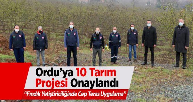 Ordu'ya 10 Tarım Projesi Onaylandı