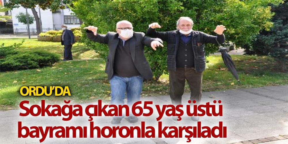 Sokağa Çıkan 65 Yaş Üstü Bayramı Horonla Karşıladı