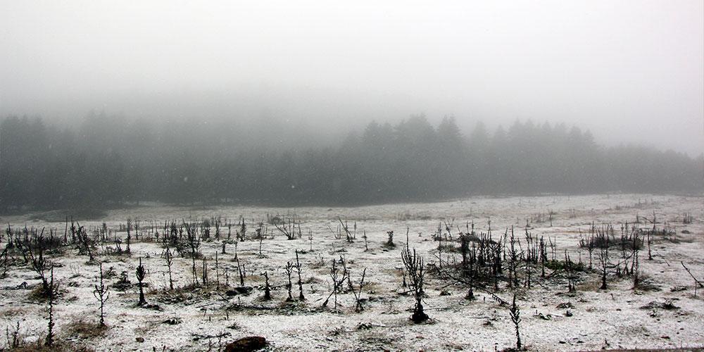 Bolu'nun yüksek kesimlerine kar yağdı