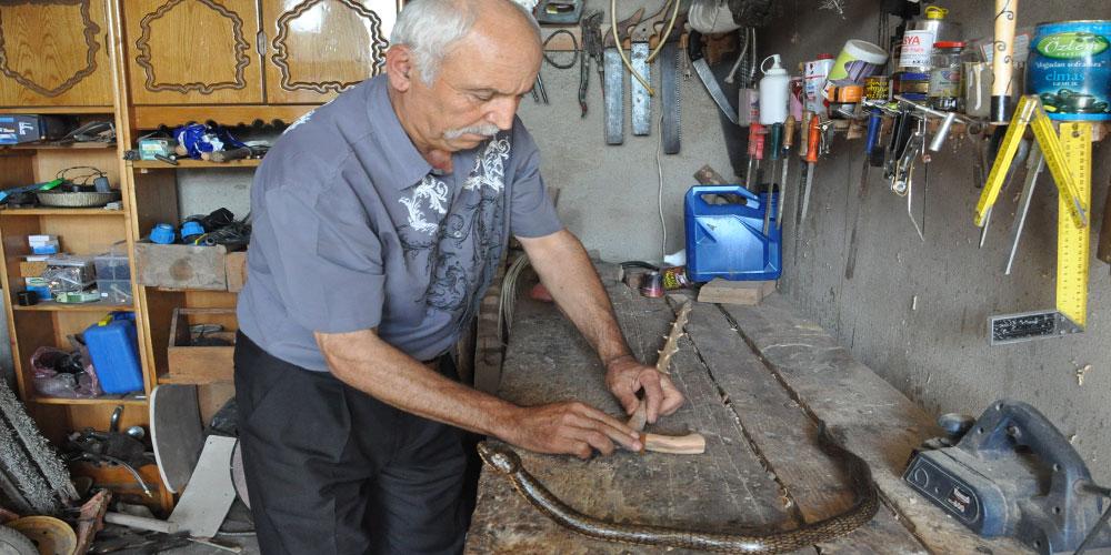 Emekli madenci, kızılcık ağacından baston yapıyor