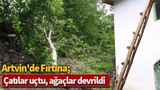 Artvin'de fırtına; çatılar uçtu, ağaçlar devrildi