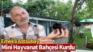 Emekli astsubay mini hayvanat bahçesi kurdu