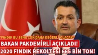 """""""FINDIK BU SENE ÇOK DAHA DEĞERLİ OLACAK"""""""