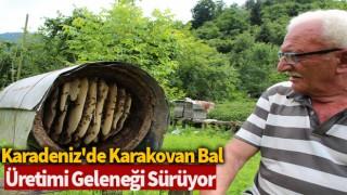 Karadeniz'de karakovan bal üretimi geleneği sürüyor