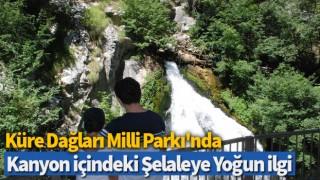 Küre Dağları Milli Parkı'nda kanyon içindeki şelaleye yoğun ilgi