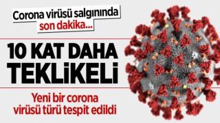 Yeni bir corona virüsü türü tespit edildi