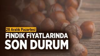 FINDIK FİYATLARINA SON DURUM!