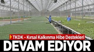 TKDK - Kırsal Kalkınma Hibe Destekleri Devam Ediyor