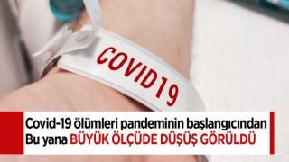 Covid-19 ölümleri pandeminin başlangıcından bu yana büyük ölçüde düştü
