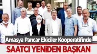 Amasya Pancar Ekiciler Kooperatifinde Saatcı yeniden başkan