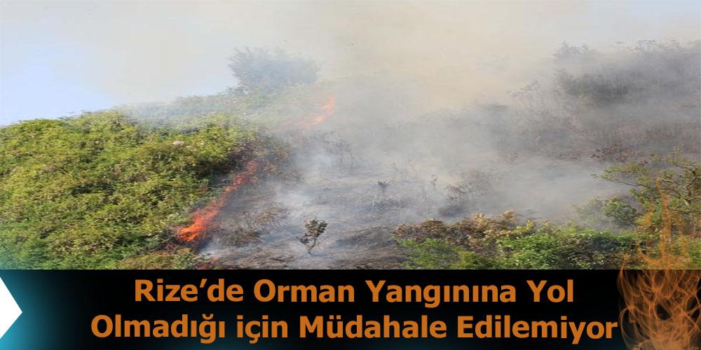 Rize'de Orman Yangınına Yol Olmadığı İçin Müdahale Edilemiyor
