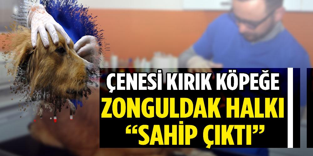 Bütün Zonguldak seferber oldu