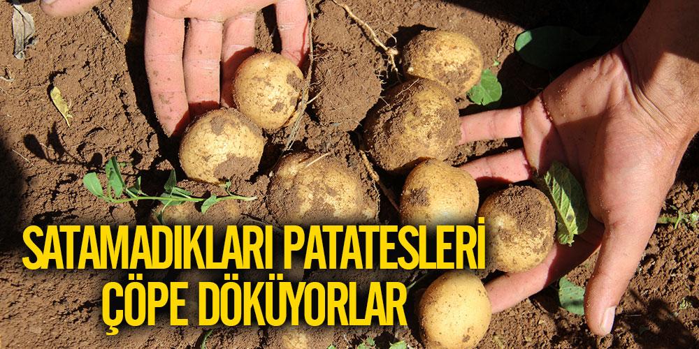 Satamadıkları patatesleri çöpe döküyorlar